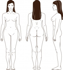 kropstegning
